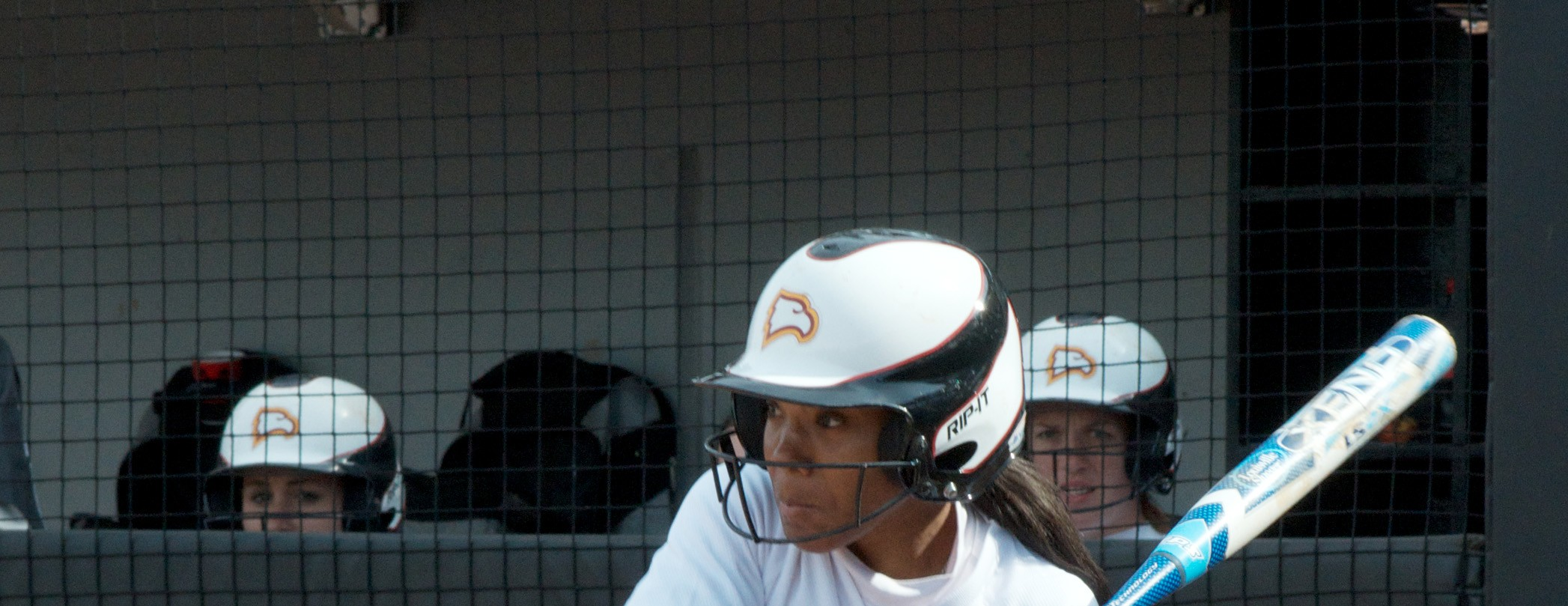 Softball opens 2013 season at the Red and Black Showcase