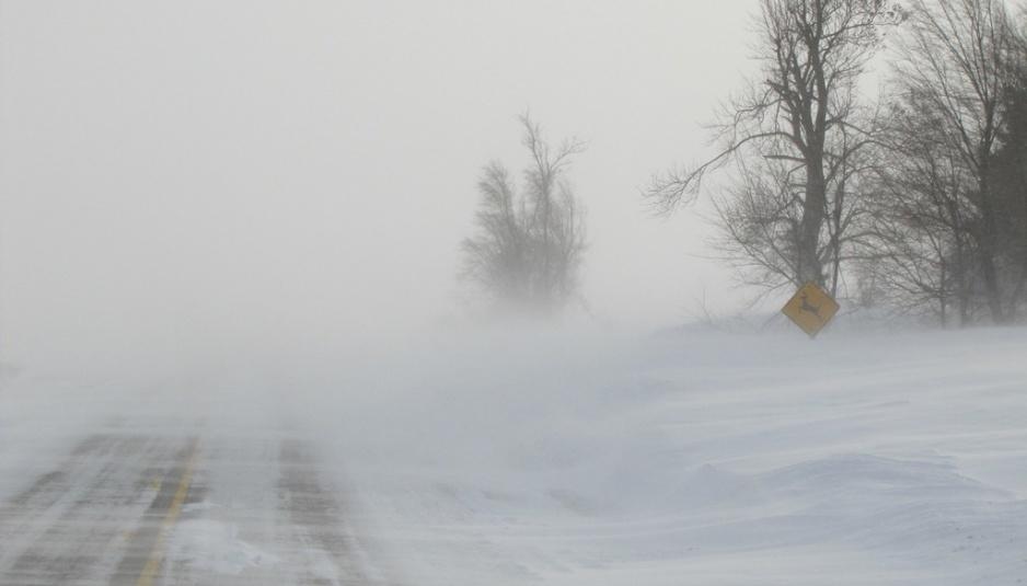 http://www.mytjnow.com/wp-content/uploads/2015/02/WinterBlizzard-e1425008149788-938x535.jpg